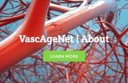 Sėkmingas COST veiklos VascAgeNet darbo grupių susitikimas